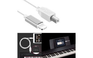 Cable Lightning a USB-B - Cable MIDI iPad & iPhone