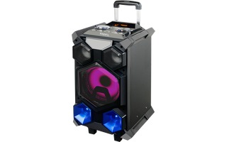 Ibiza Sound SPL BOX 350 Portable