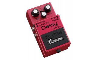 Boss DM-2W Delay