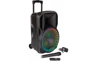 "Party Light & Sound 15 RGB - Altavoz portable 15"" - Iluminación LED RGB"