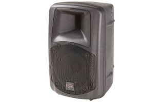 "VERSATILE HIGH EFFICIENCY TWO-WAY VENTED 8"" LOUDSPEAKER, BLACK"