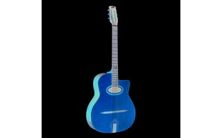 EKO Guitars EVO Gipsy Nat