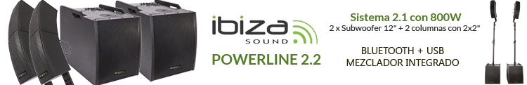 Ibiza Sound powerline 2.2